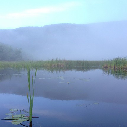 Misty Pond Overlooking Mountains