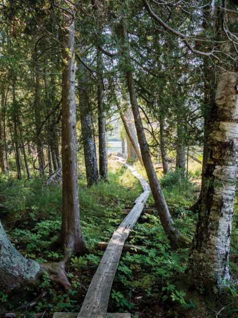 The Hadlock Ponds Trail, Acadia National Park