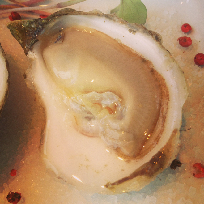 Single oyster from Spruce Point Inn