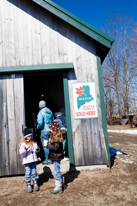 05d2ae5c643 Maple Love  On the Sugarhouse Circuit - The Maine Mag