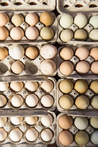fresh and local eggs