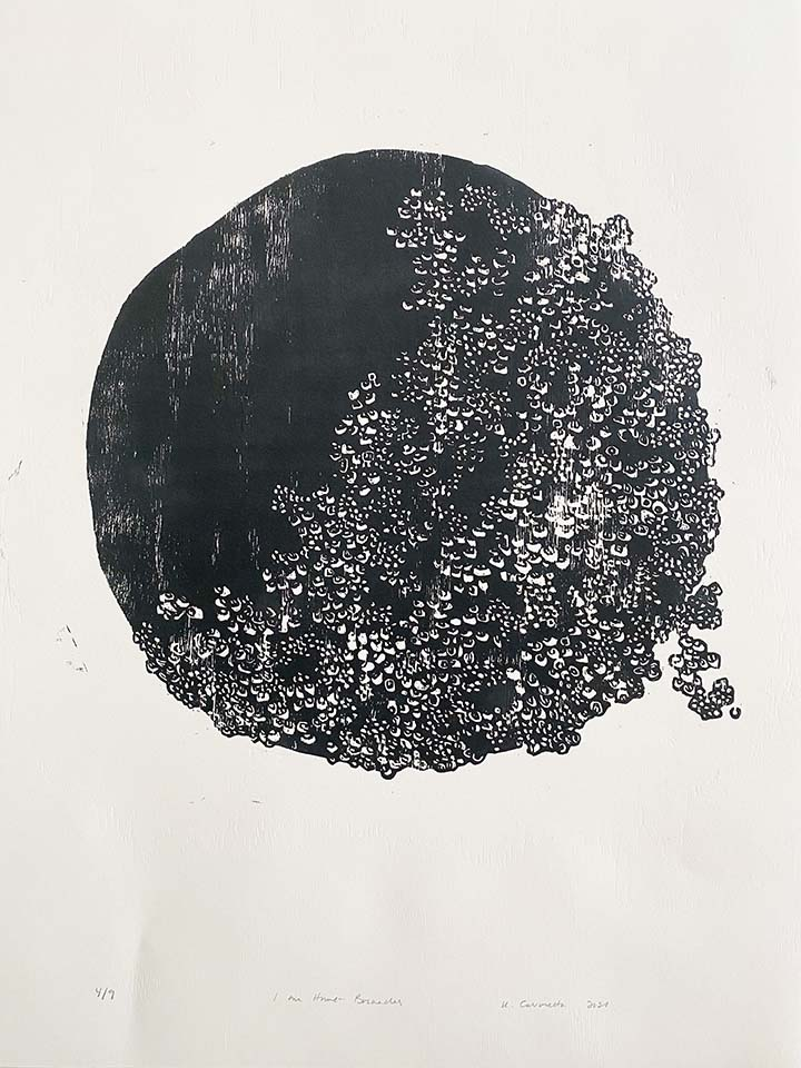 I Am Home—Barnacles by Maine artist, Kristy Cavaretta